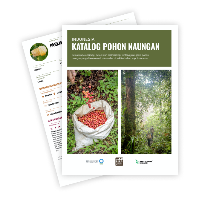 Catalog Graphic Indonesia